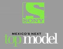 Mexico´s Next Model