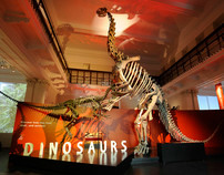 Dinosaurs Exhibition