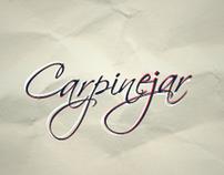 Blog Fabrício Carpinejar