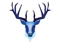 Symbols of Finland