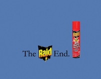 Raid Campaign