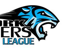 York Tigers Rebranding
