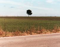 murgia lands |