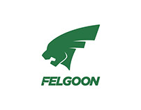 Felgoon Branding