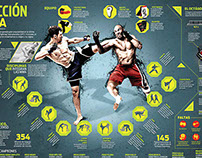 MMA INFOGRAPHIC