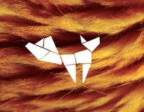 Four Foxs