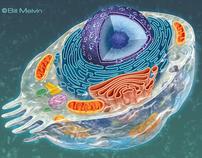 BIOLOGY ART