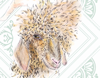 Taalgenoot Illustrations — Angora goats in South Africa