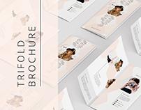 Portfolio Trifold Flyer