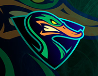 Duck sports logo mascot