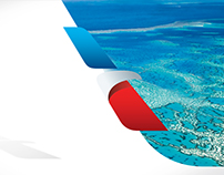 American Airlines - Flying Kind Website