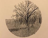 January drawings
