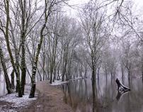 Un jour d'hiver au Parc Balzac, à Angers