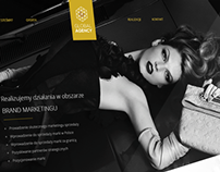 Global Agency - Homepage project