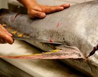 Tuna World