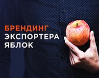 Вкусный брендинг экспортера яблок