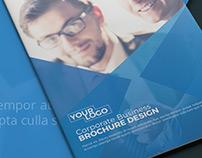 Company Catalog Brochure