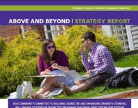 Stonehill College Strategy Report