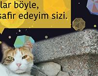 Düşle Beşiktaş & HAYTAP | Poster