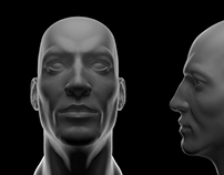 Head Sculpt Study