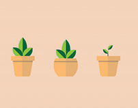 Flat Potted Plants