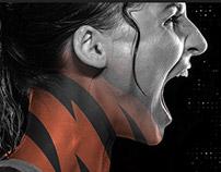 Cincinnati Bengals 2016 Campaign