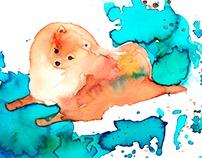 Watercolor pets