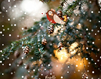 Noël enchanté