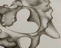 Anathomy drawings