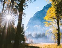 Two Weeks in Yosemite National Park