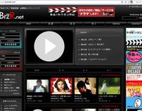 BizR Net (www.bizrnet.com) [DEV]