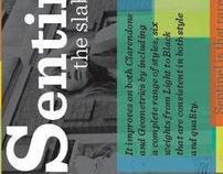 Sentinel Poster