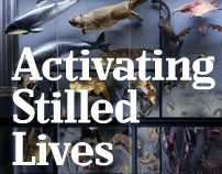 UCL: Activating Stilled Lives Poster