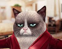 3d character Grumpy Cat, недовольный кот