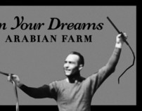In Your Dreams Arabian Farm logo concept