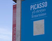 _PICASSO/El Eterno Femenino