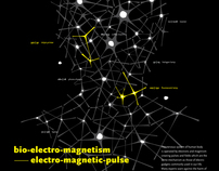 Bioelectro-magnetism, Electro-magneticpulse