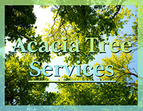Acacia Tree Services WordPress Website