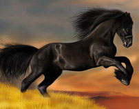 Horse - Digital Painting