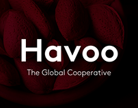 App - Pitch screens for influencer platform Havoo