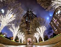 Atlanta Evening Photowalk 2