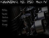 Kawasaki H2 750 Rebuild - www.H2750.com