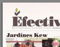 "Efectivo ""Newspaper"""