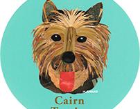 020 | Cairn Terrier