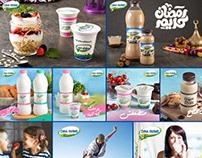 Dina Farms Social Media Designs