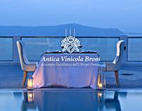 Antica Vinicola Broni - Website