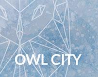 Owl City Album Design (Visual Logic)
