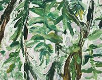 Botanical Postcard Series