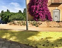 COLOURS, BARCELONA