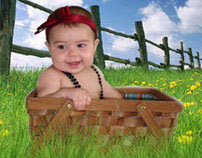 Baby In Picnic Basket